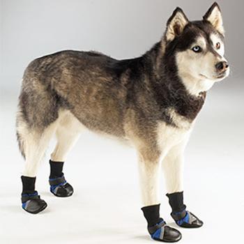 Guardian Gear Dog Boots - Blue