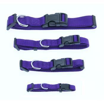 Barking Basics Dog Collar - Purple