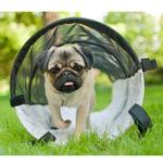 The perfect play tunnel for your dog.