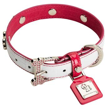 Dog Collars, Leashes, & Harnesses