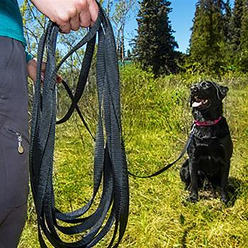 RC Training Dog Leash - Black