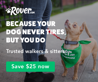 Here is how to start a dog walking business. Get started with rover.com.