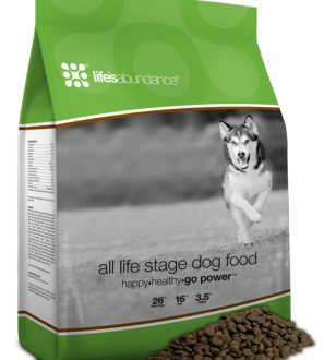 Find high quality dry dog food for all lifes stages from Life's Abundance online today!