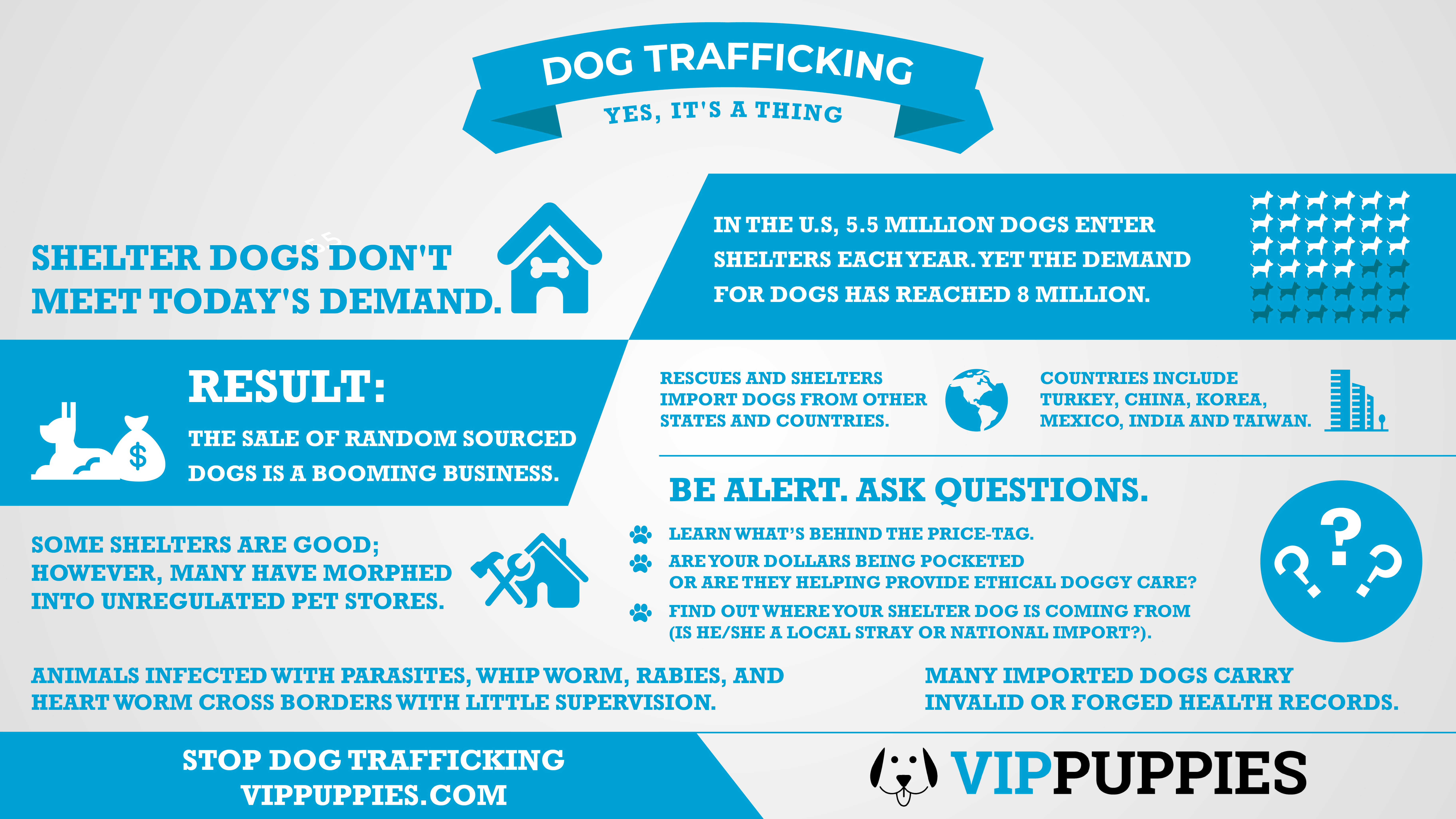 Stop dog trafficking and be pro dog.