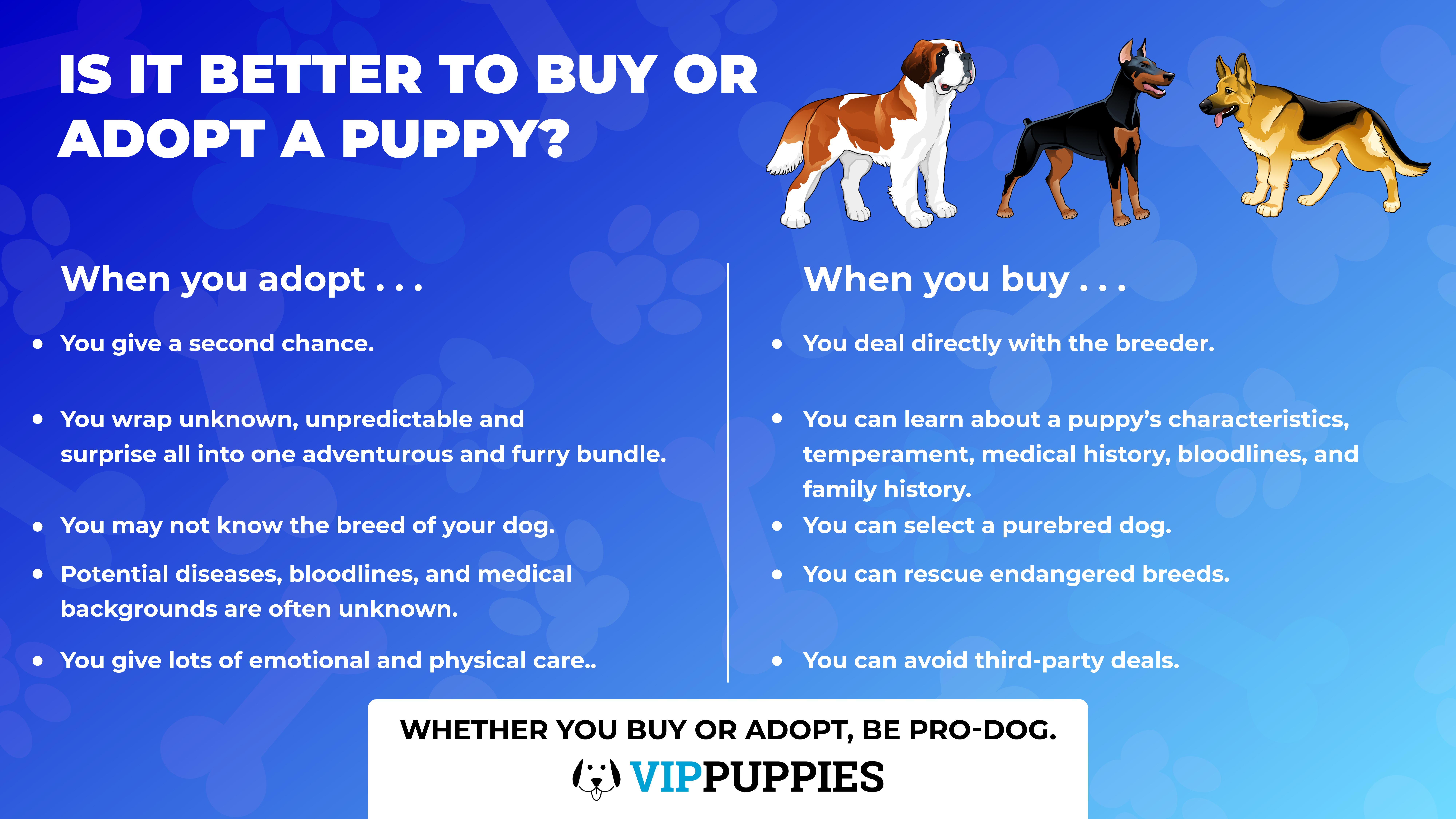Is it better to buy or adopt a puppy?