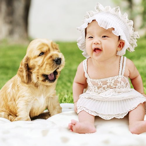 Newborn puppy and baby photoshoot