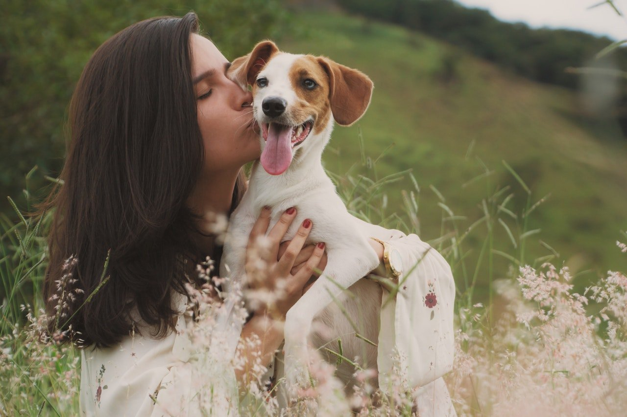 Professional photo shoot of woman with her dog in field with flowers.