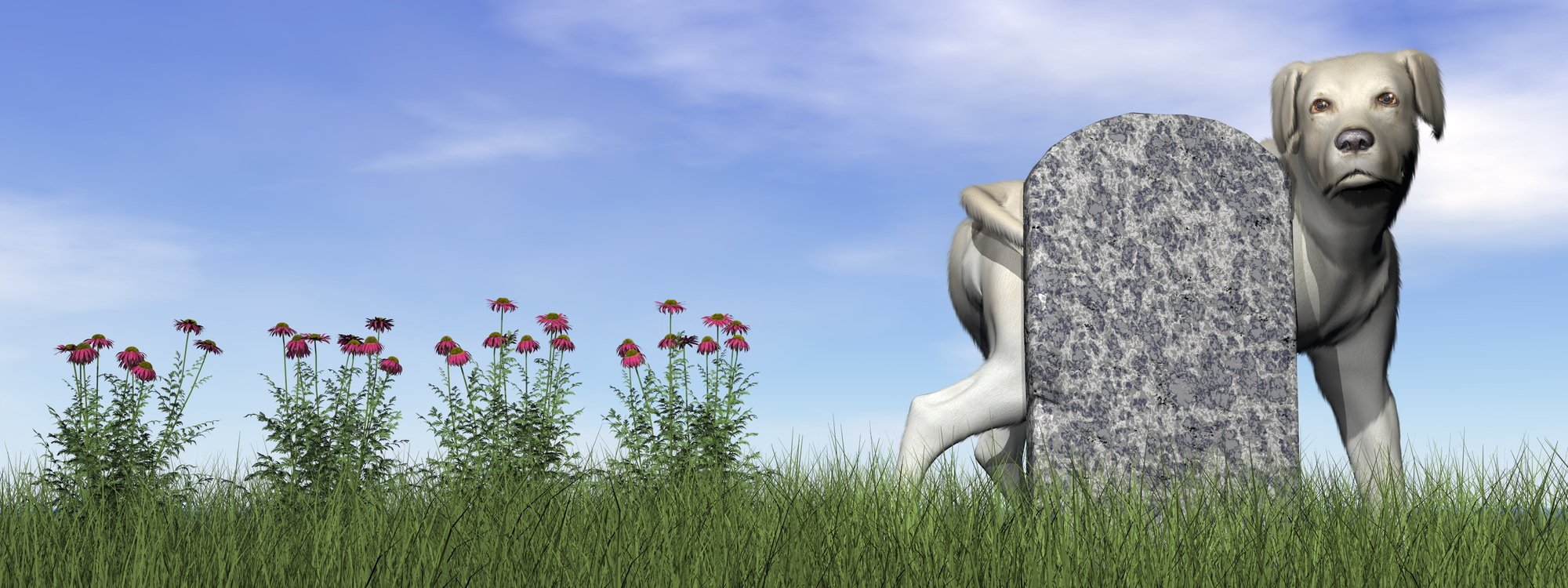 Tombstone with labrador dog by day - 3D render