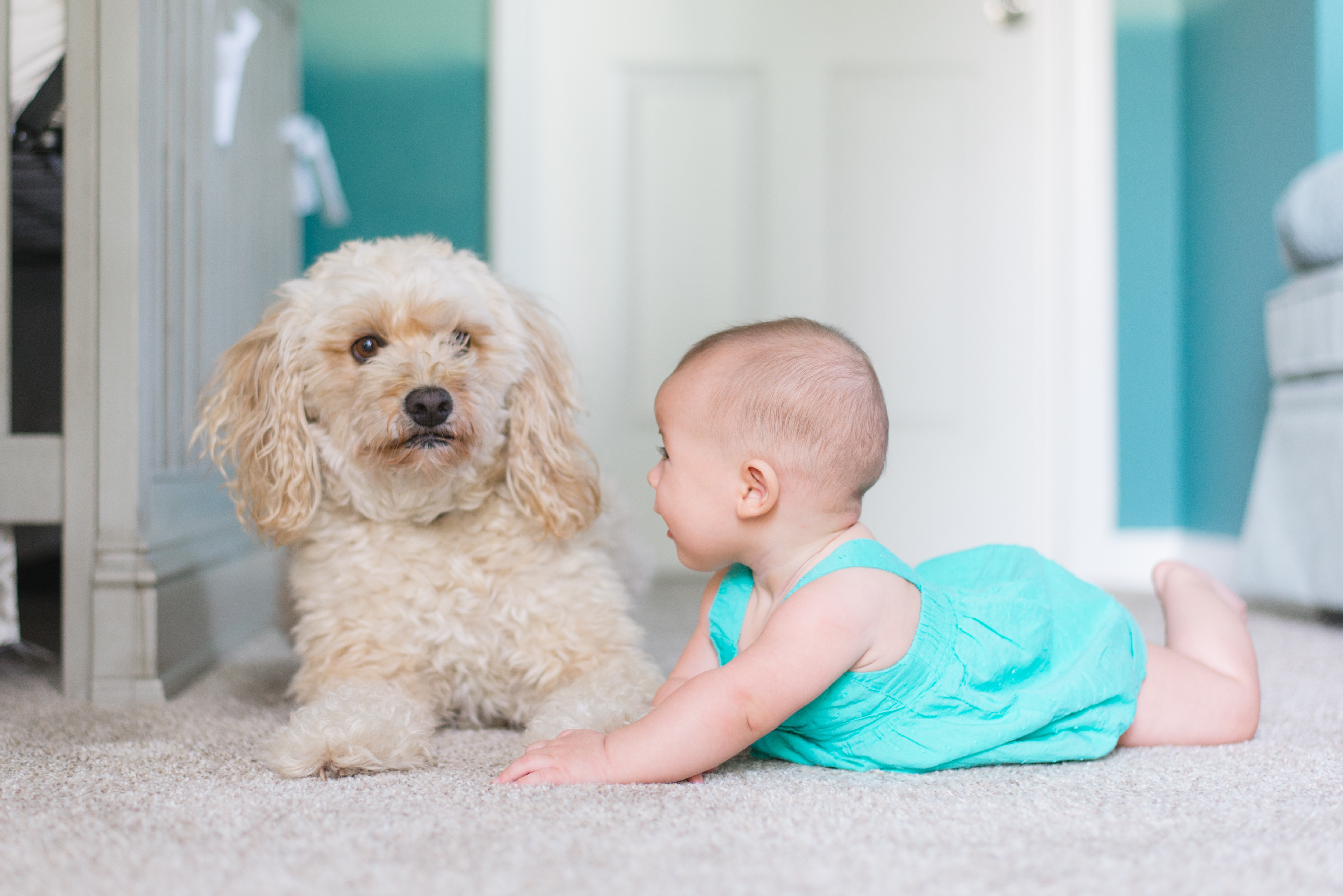 Cute baby laying on the floor with a cute dog.