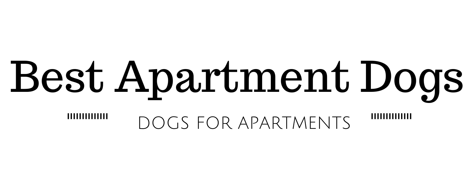 41 Best Dogs for Apartments