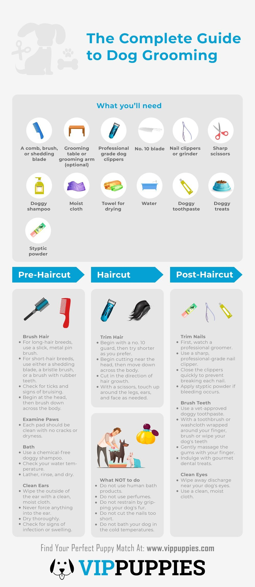 Dog grooming guide infographic
