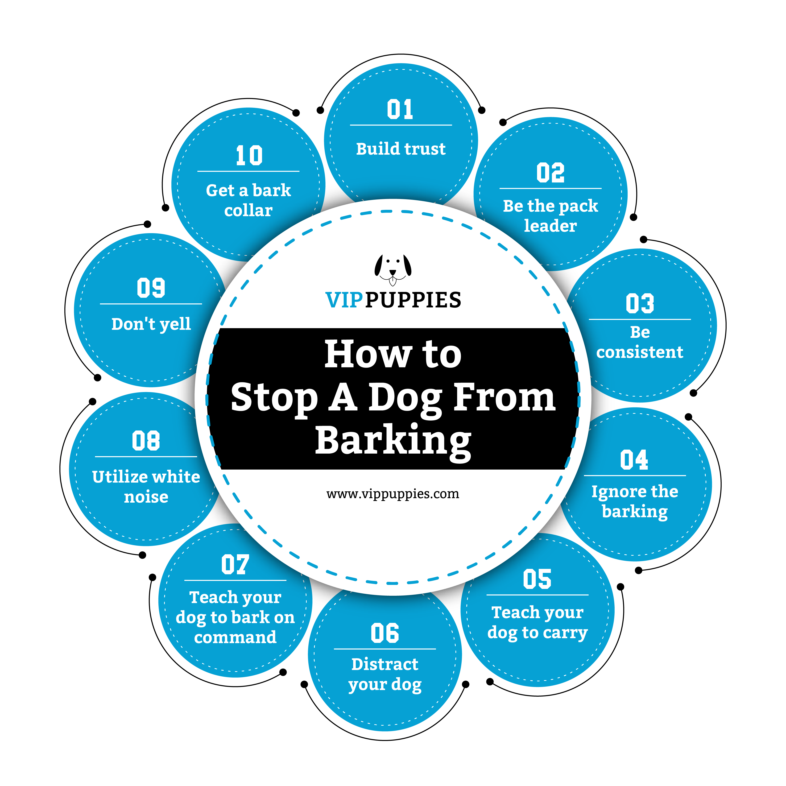 How to stop a dog from barking.