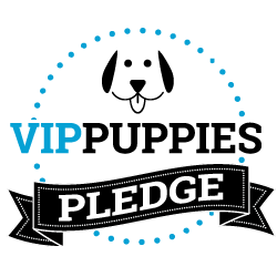 VIP Puppies Pledge - Learn about our dog & puppy adoption process.