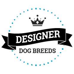 Designer Dog Breed Finder