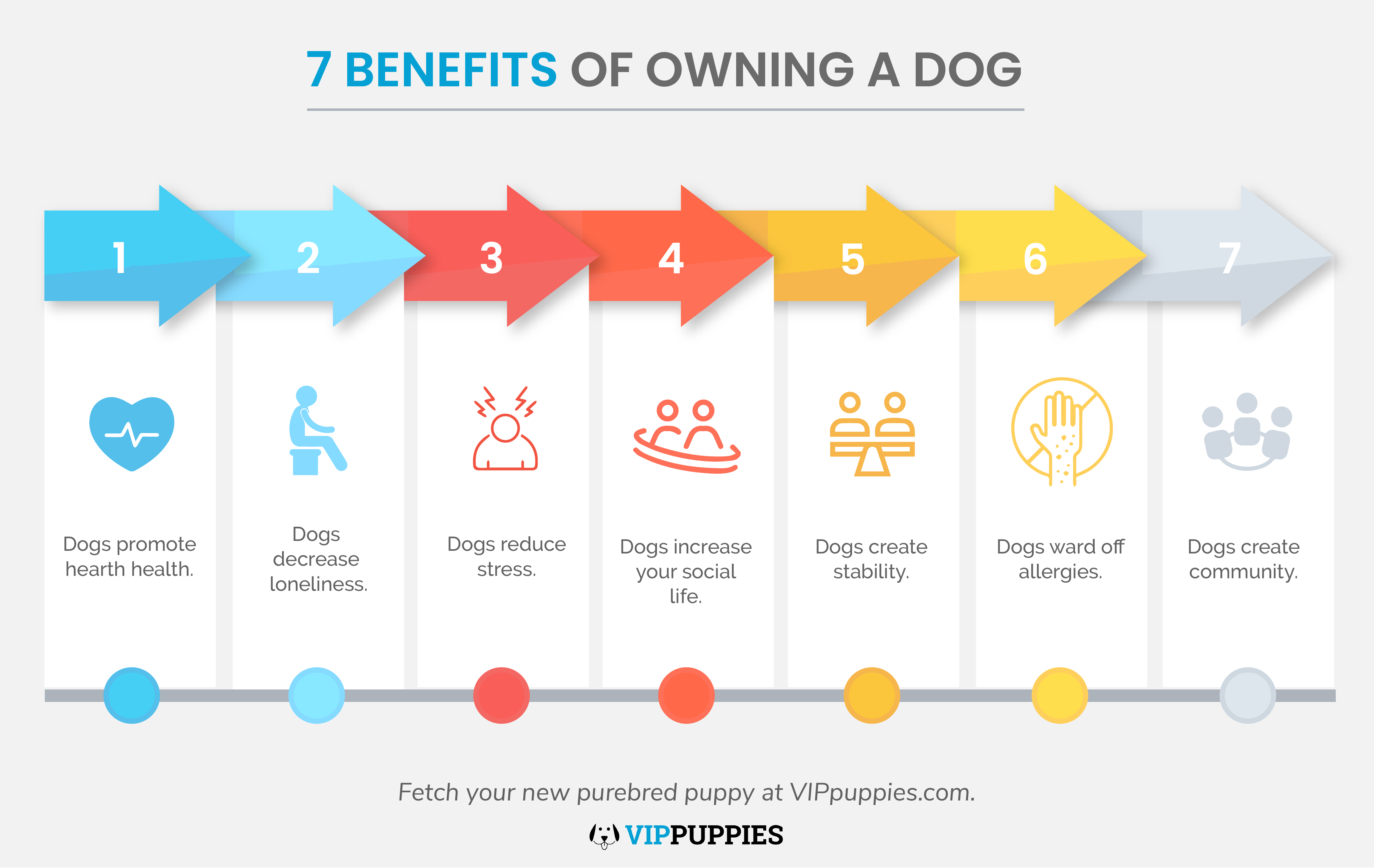 7 Benefits Of Owning A Dog Infographic