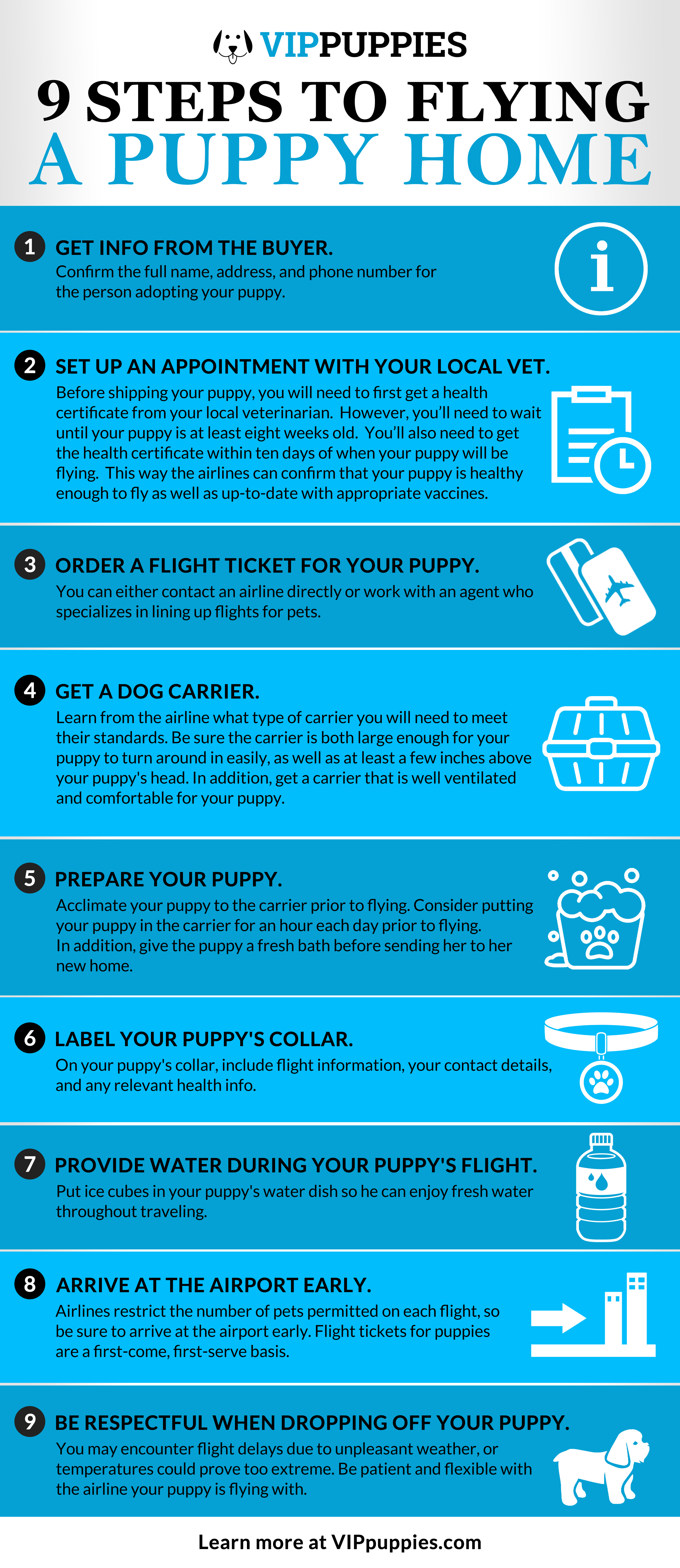 9 Steps to shipping a dog by air infographic