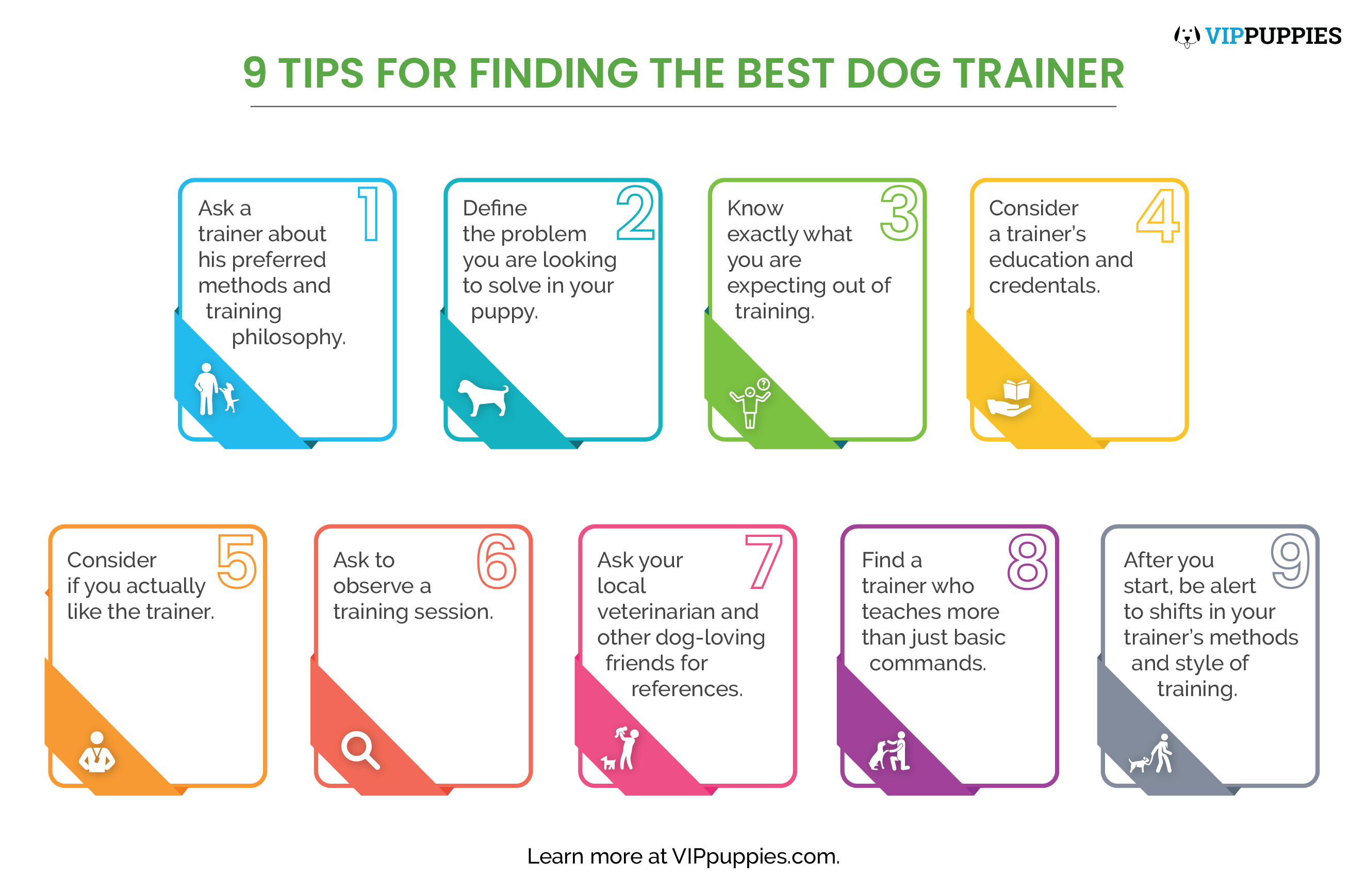 9 tips for finding the best dog trainer infographic.