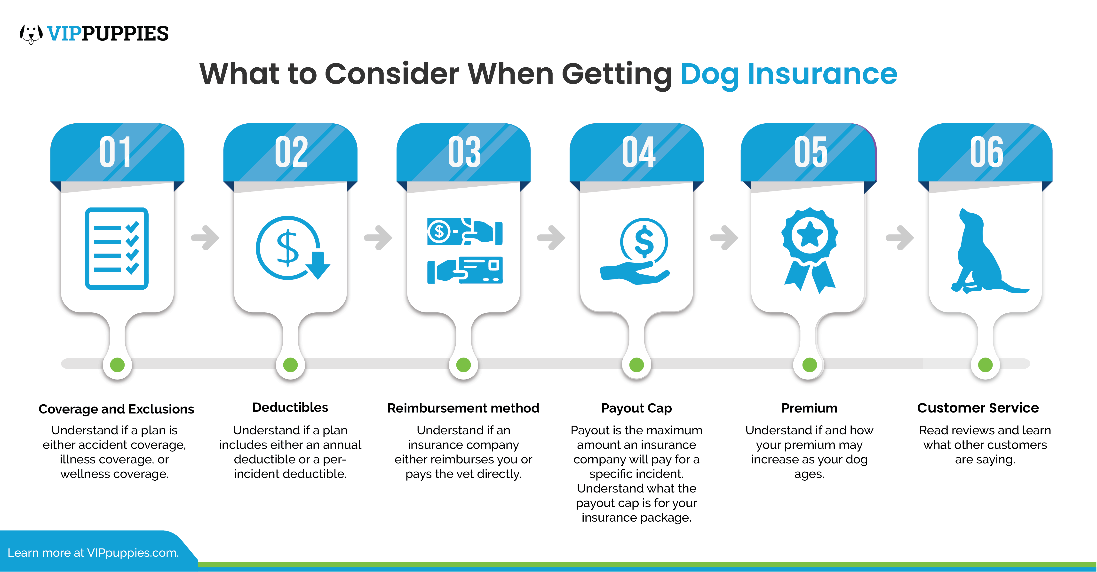 What to consider when getting dog insurance.