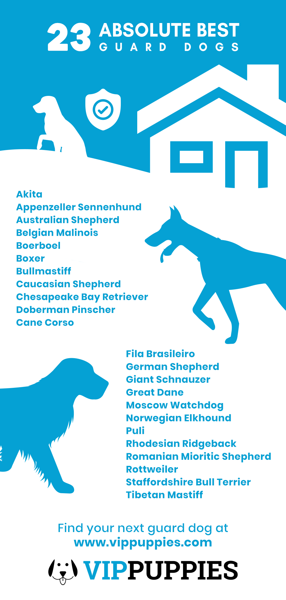 The 23 absolute best guard dogs infographic