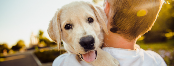 Day Two: How to Choose the Perfect Puppy Name!
