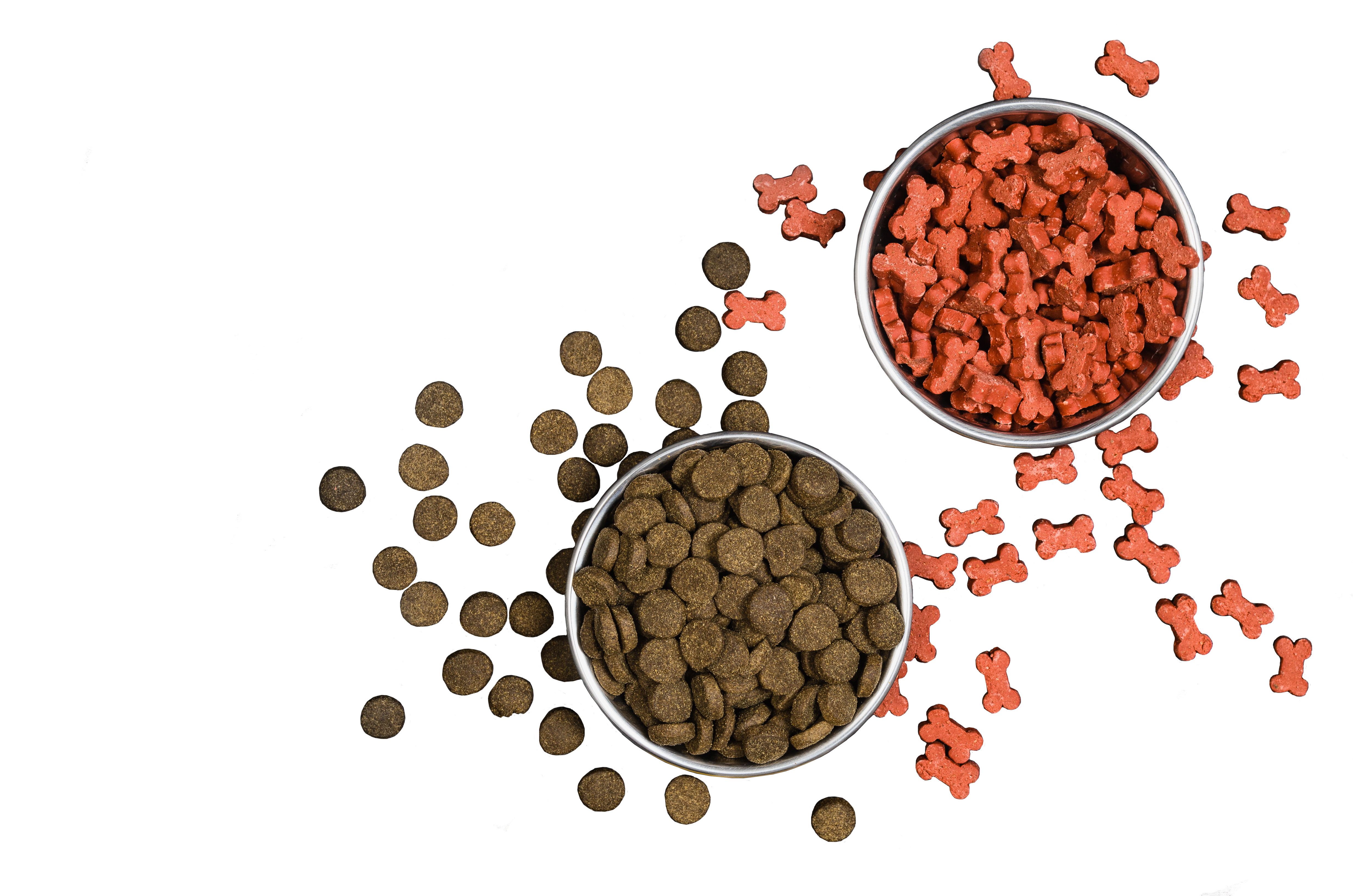 Two kinds of dog food in two different bowls