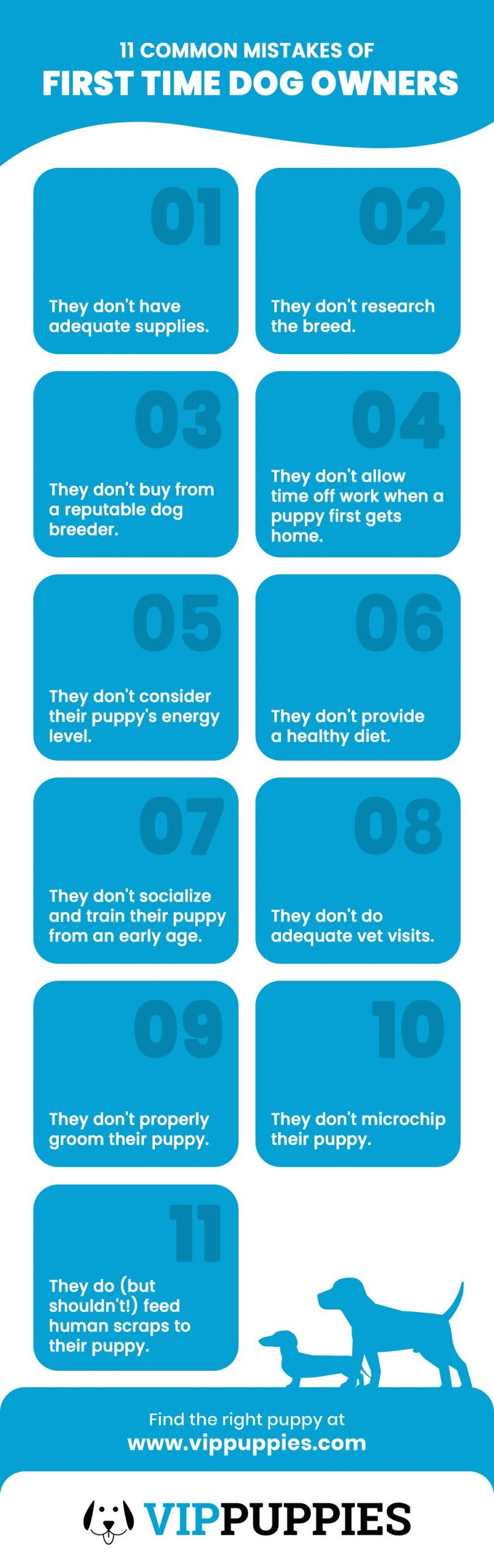 11 Common Mistakes of First Time Dog Owners Infographic