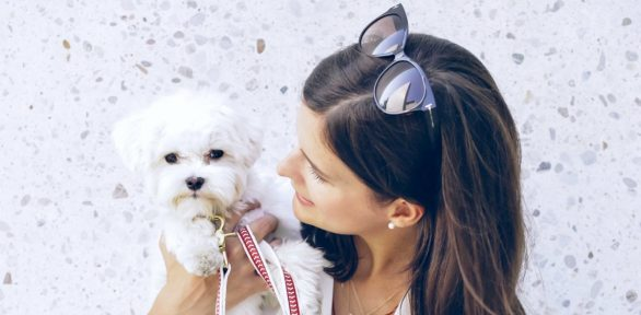 11 Common Mistakes of First Time Dog Owners