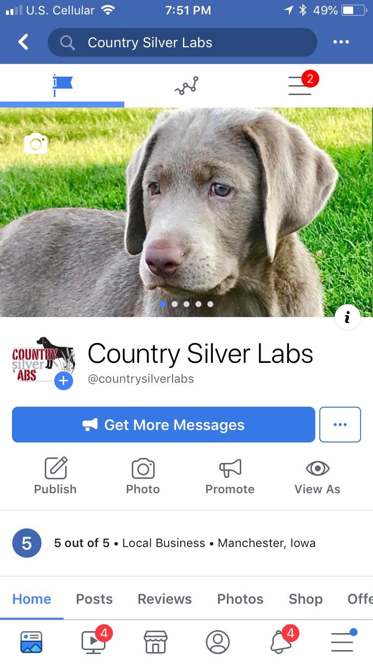 countrysilverlabs_-jpg