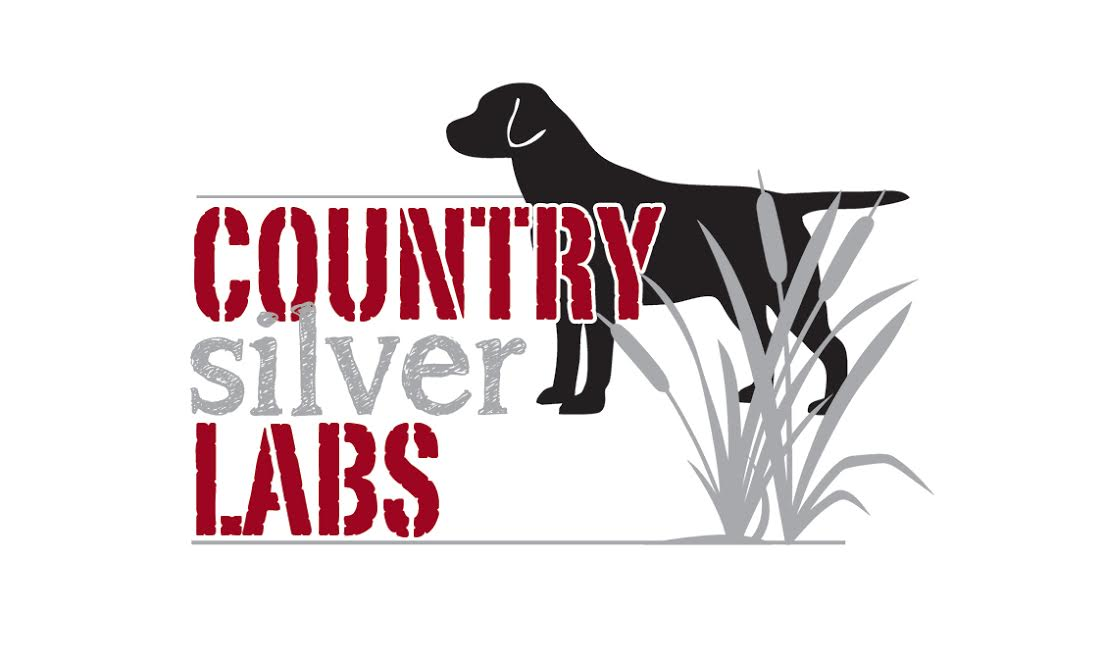 countrysilverlabslogo-jpg